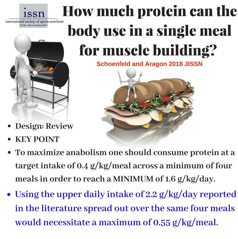 NUTRITION – PROTEIN – OPTIMAL INTAKE FOR STRENGTH AND
